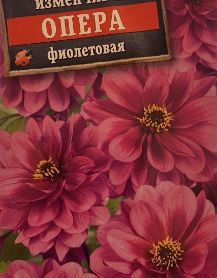 Семена Георгина Опера Фиолетовая-Аэлита