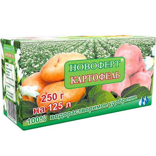 250_kartofel